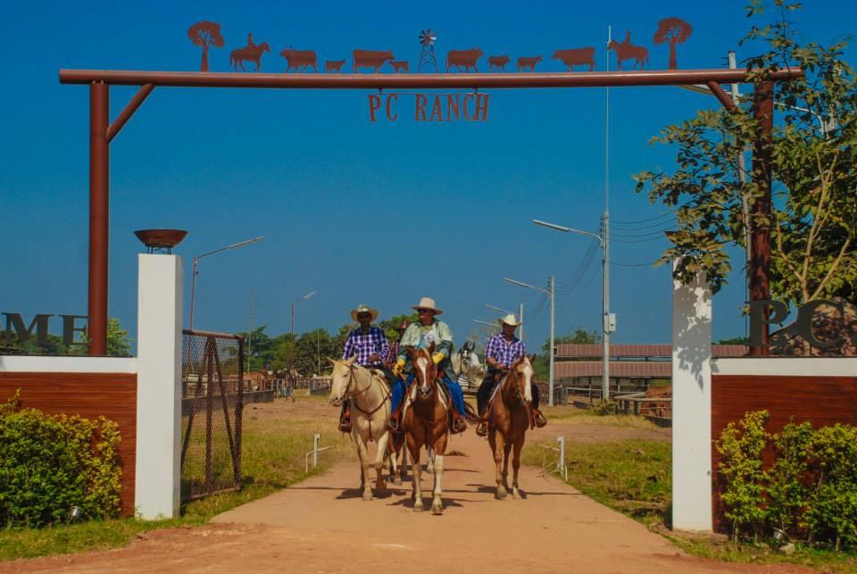 P.C. cowboy town ฟาร์ม คาวบอย ม้า วัว สเต็ก